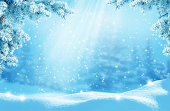 Merry Christmas and happy new year greeting card. Winter landscape with snow .Christmas background with fir tree branch royalty free stock photo