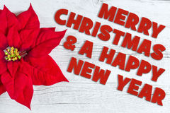 Merry Christmas. And a Happy New Year greetings written with textile letters on traditional white wood background and red Poinsettia flower Stock Photo