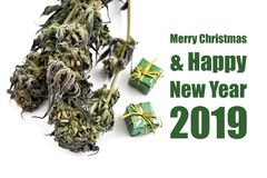 Merry Christmas and Happy New Year 2019 illustration. Drug christmas background. White Christmas card with hemp. Marijuana on a white background. Merry Cannabis vector illustration