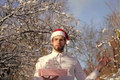 Merry Christmas and happy new year. Man holding present box in snow wood. Season greetings and xmas gifts. Macho in red santa hat on winter day. Holidays royalty free stock images