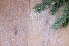 Merry Christmas and Happy New Year, pine tree in the snow Stock Photography