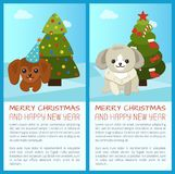 Merry Christmas Pine Tree Set Vector Illustration. Merry Christmas and Happy New Year, placards with headlines and text sample, pine tree with star and dog with Stock Photography