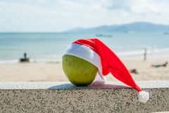 Merry Christmas and Happy New Year on the summer beach. Coconut in santa hat. Palms and blue sky on the background.  Royalty Free Stock Images