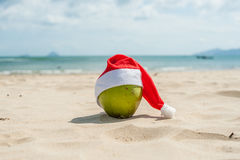 Merry Christmas and Happy New Year on the summer beach. Coconut in santa hat. Palms and blue sky on the background.  Stock Photos