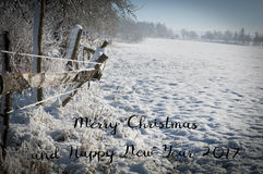 Merry Christmas and Happy New Year 2017 trendy natural card, original Christmas background from nature Stock Photography