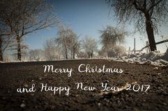 Merry Christmas and Happy New Year 2017 trendy natural card, original Christmas background from nature with text written on the ro. Merry Christmas and Happy New Stock Photos