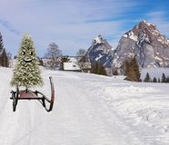 Merry christmas a happy smiling christmas pine tree sliding down hill on a sled in a winter mountain landscape stock photography