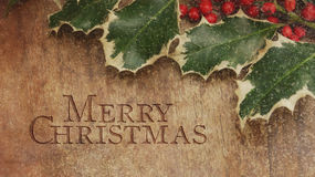 Merry Christmas. Holly Leaves. And Berries Stock Images