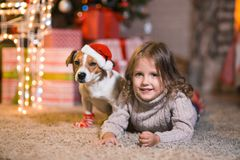 Little girl child at home at the fireplace with a dog Jack Russell Terrier and a New Year tree with gifts and luminous garlands c royalty free stock images