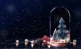 Merry Christmas with mistletoe and gift box icon with xmas tree stock photography