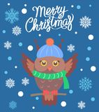 Merry Christmas Owl with Scarf Vector Illustration. Merry Christmas, promotional poster with owl wearing knitted green scarf and hat, image with title and Stock Photos