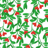 Merry Christmas pattern. Merry Christmas seamless vector pattern with mistletoe Royalty Free Stock Photography