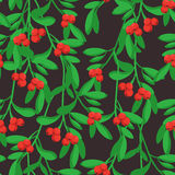 Merry Christmas pattern. Merry Christmas seamless vector pattern with mistletoe Royalty Free Stock Images