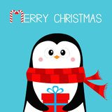 Merry Christmas. Penguin holding gift box present. Red scarf. Happy New Year. Cute cartoon kawaii baby character. Arctic animal. stock illustration