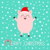 Merry Christmas. Pig piglet. Cute cartoon funny baby character. Hog swine sow animal. Santa hat. Chinise symbol of 2019 new year. royalty free illustration