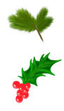 Merry christmas pine and holly illustration. Merry christmas pine branch and holly leaf with berries illustration, happy New Year Vector Illustration
