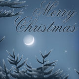 Merry Christmas post card with trees moon night Background Stock Photo
