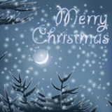 Merry Christmas post card with trees moon night snow Background Royalty Free Stock Image