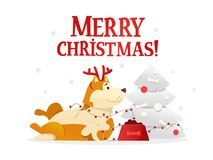 Merry Christmas postcard template with the cute yellow dog lying near the Christmas tree on white background. The dog. Cartoon character vector illustration Royalty Free Stock Photo
