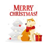 Merry Christmas postcard template with the cute yellow dog with the red gift sitting near the Christmas tree on white. Background. The dog cartoon character Stock Image