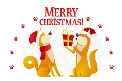 Merry Christmas postcard template with two cute yellow dogs with the red gift on white background. The dog cartoon. Character vector flat illustration Royalty Free Stock Image