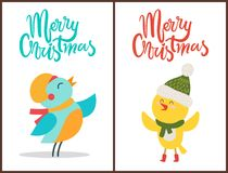 Merry Christmas Posters Congratulation from Birds. Dressed in warm scarf and knitted hat. Vector illustration with congrats from animals on white background Royalty Free Stock Photo