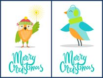 Merry Christmas Posters Set Vector Illustration. Merry Christmas, posters set with owl that is wearing hat and holding Bengal light, bird with warm knitted scarf Stock Photography