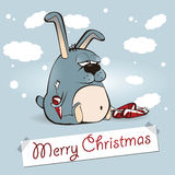 Merry Christmas rabbit Royalty Free Stock Images