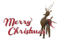 Merry christmas raindeer Royalty Free Stock Images