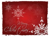 Merry Christmas red background. Dark red background with white snowflakes and text Merry Christmas Stock Photography