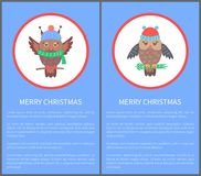 Merry Christmas 70s Congratulation Postcard. With owl dressed in warm knitted clothes. Vector illustration with birds on blue background Stock Photo