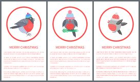 Merry Christmas 70s Postcard Vector Illustration. Merry Christmas 70s postcard with beautiful bullfinch dressed in knitted hat in round red frame. Vector Royalty Free Stock Image