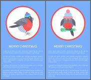 Merry Christmas 60s or 70s Postcard Congrats. With beautiful bullfinch in warm winter hat. Vector illustration with bird sitting on twig royalty free illustration