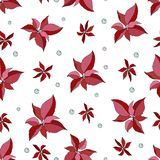 Christmas seamless pattern with poinsettia and berries royalty free illustration