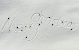 Merry Christmas, snow text Stock Photography