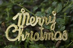 Merry Christmas Text Stock Images