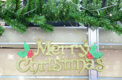 Merry christmas. Text and pine tree Royalty Free Stock Images