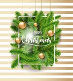 Merry Christmas tree green branches with gold toys bulb and white frame on white and gold background. EPS Vector illustration. Merry Christmas tree green Royalty Free Stock Photography