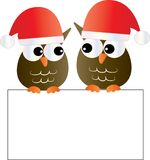 Merry Christmas two cute owls holding a placard Royalty Free Stock Photo