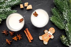 Merry christmas in winter evening with alcohol drink. Eggnog with gingerbread cookie, cinnamon and spruce on black desk Stock Images