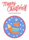 Merry Christmas and Winter Vector Fox in Sweater. Merry Christmas and happy winter days, poster with text and fox , wearing blue sweater vector illustration on Royalty Free Stock Photo