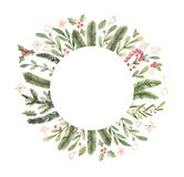 Merry Christmas. Winter Watercolor circle label with snowflakes, holly, mistletoe, spruce branch. Hand drawn illustration. Perfect for invitations, greeting vector illustration