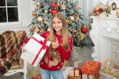 Merry Christmas. xmas online shopping. Family holiday. Christmas tree and presents. Happy new year. Winter. The morning royalty free stock photo