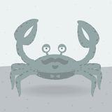 Merry crab on the  beach Royalty Free Stock Photo