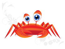 Merry-eyed crab. Royalty Free Stock Photos