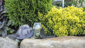 Merry faux turtle on a background of shrubs arborvitae and barberry. Background Royalty Free Stock Image