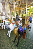 Merry-go-round. Three white horses and one black horse, view of behind of the merry-go-round Royalty Free Stock Images
