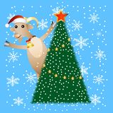 Merry goat and christmas tree Royalty Free Stock Images