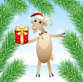 Merry goat with a gift Royalty Free Stock Image