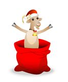 Merry goat in a sack on a white background Royalty Free Stock Photo